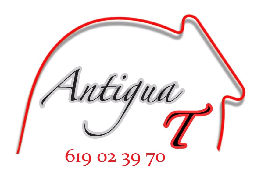 AntiguaT